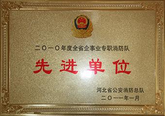2010年河北省先进单位